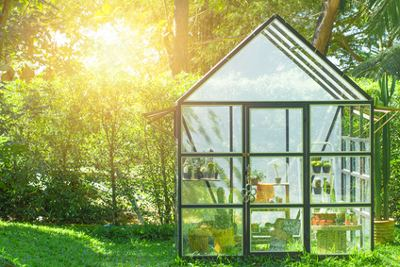 Gewächshaus aus Glas im Garten